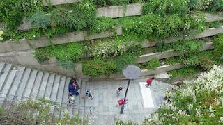 Paris: The Inspiration for New York's High Line Park