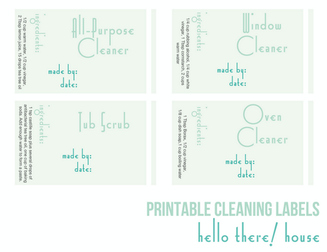 Free Printable Friday:  Spring Cleaning