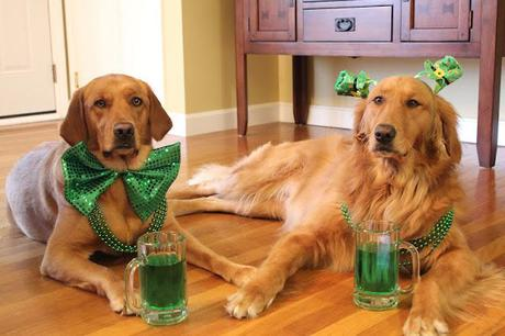 Happy St. Patrick's Day!!!