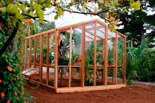 Business Ideas : Greenhouse