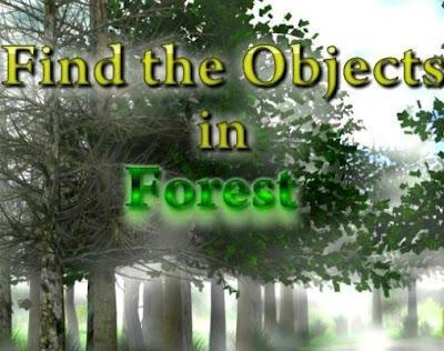 Find The Objects In Forest