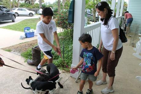 kids volunteer, Big Dog Ranch Rescue, dog rescue, BDRR, Raymond Lee Jewelers