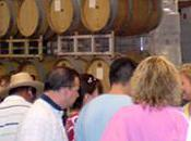 Avoiding Crowds Temecula Wine Country