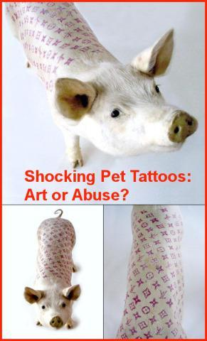 Shocking Tattooed Pets Blur the Line Between Art, Ownership and Abuse