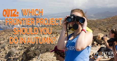 QUIZ: Which Frontier Project Should you Do In Autumn?