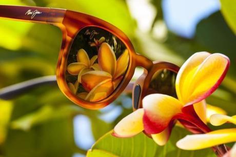 Discover the most original Maui Jim sunglasses