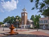 Things Downtown Georgetown,