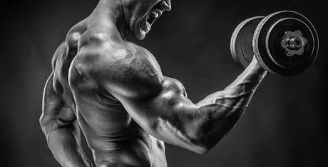 Bigger biceps | Less effort