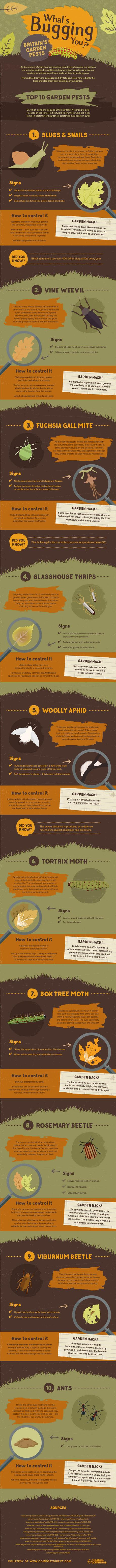 garden pests infographic