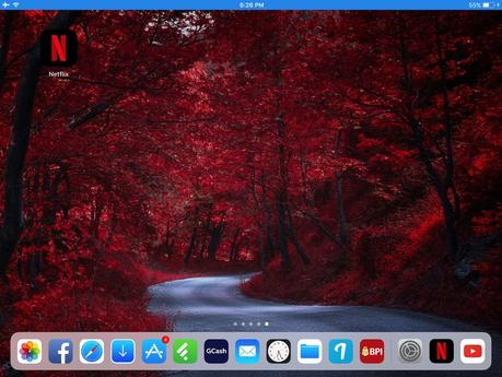 iOS 11 Screen Recording Bug on iPad Air 1
