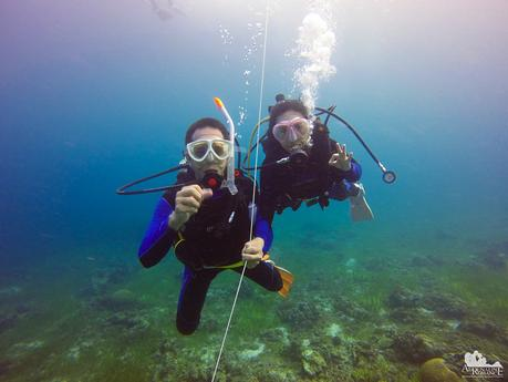 Happy Diving Couple
