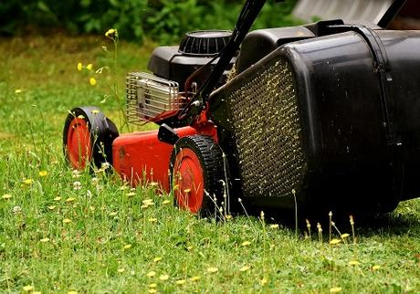 How To Select The Perfect Mower For Your Yard Size
