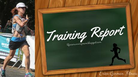 June 2017 Training Report