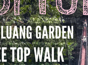 Tung: Luang Garden Tree Walk