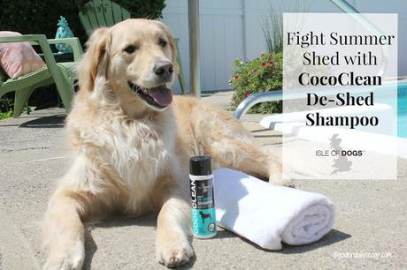 grooming products for dogs to help shedding