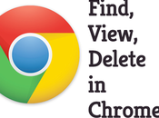 Manage(Find, View, Delete) Saved Passwords Chrome