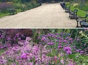 Garden Restoration Story with Saga Holidays