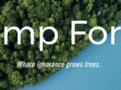 75,000 Trees Donated 'Trump Forest' Offset President's Climate Destruction