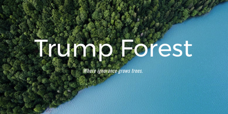 75,000 Trees Donated So Far to 'Trump Forest' to Offset President's Climate Destruction