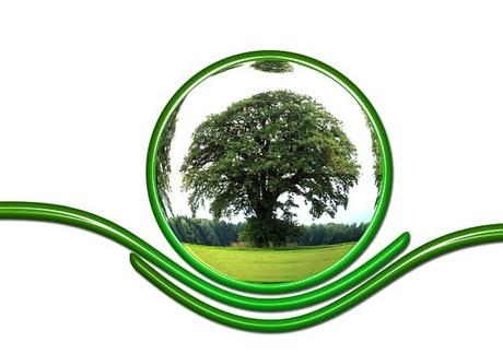 protect-ecology-protection-tree