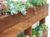 Crate Paper Design Team Succulent Cactus Frame