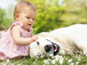 Ways That Make Your Baby Pets Best Friend Each Other