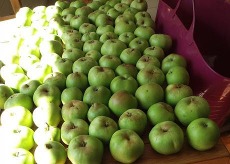 Echlinville Apple Harvest