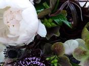 Language Flowers Feng Shui