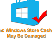Windows Store Cache Damaged 8.1, Solved