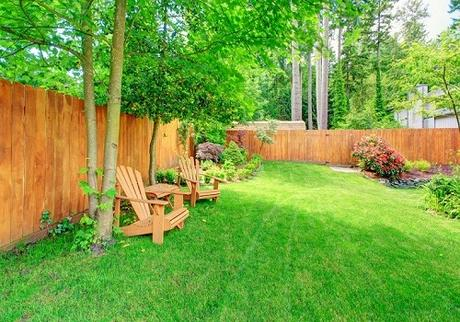Maintain and Renovate Your Garden for Healthy Living