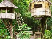 Select Right Tree House