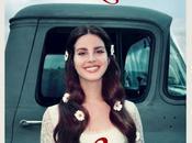 Lana Summer Bummer A$AP Rocky Playboi Carti
