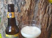 Death Rides Pale Horse Amber Cerveza Lost Muertos