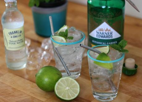 british gins to try