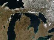 Invasive Species Shift Great Lakes Ecosystems Summit County Citizens Voice