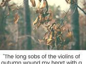 Violins Autumn