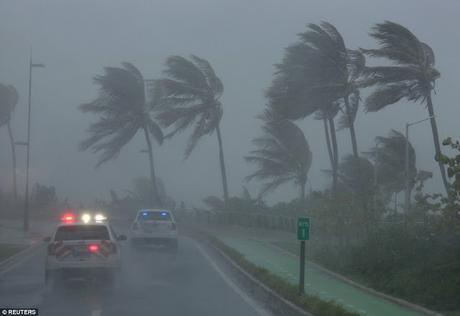 Cyclone Jose and Cyclone Irma ~ preparedness and treatment for people