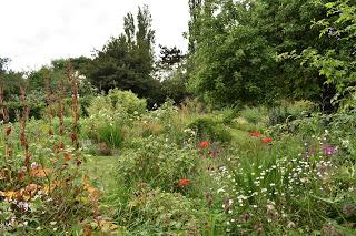 A decade of gardening at Blackberry Cottage