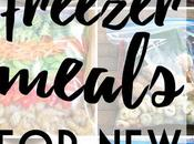 Healthy Freezer Meal Prep Dinners Moms