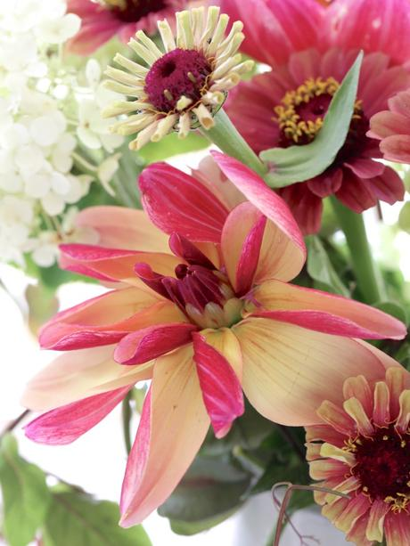 Monday Flowers – Welcoming September