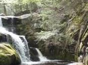 Tucker Brook Falls Minute Meditation