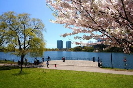 Top 10 Things to do in Toronto with Kids