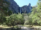 YOSEMITE VALLEY JUNE: Water, Water Everywhere