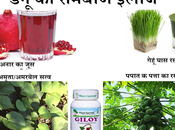 Take Care Dengue Patients Best Home Remedies Fever