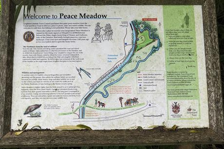 Peace Meadow