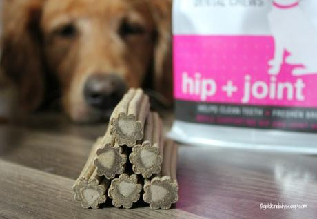 dental treats for dogs