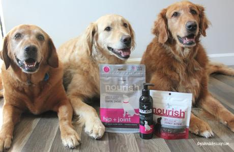 nourish jerky treats, dental chews and hip and joint supplements for dogs