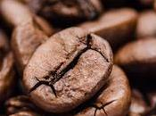 Coffee Bones?