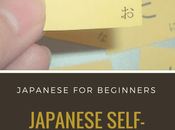 Japanese Self-Studying Updates (Lessons 15-17)