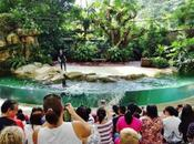 Travellers! Plan Your Trip Singapore Some Unforgettable Moments Life!